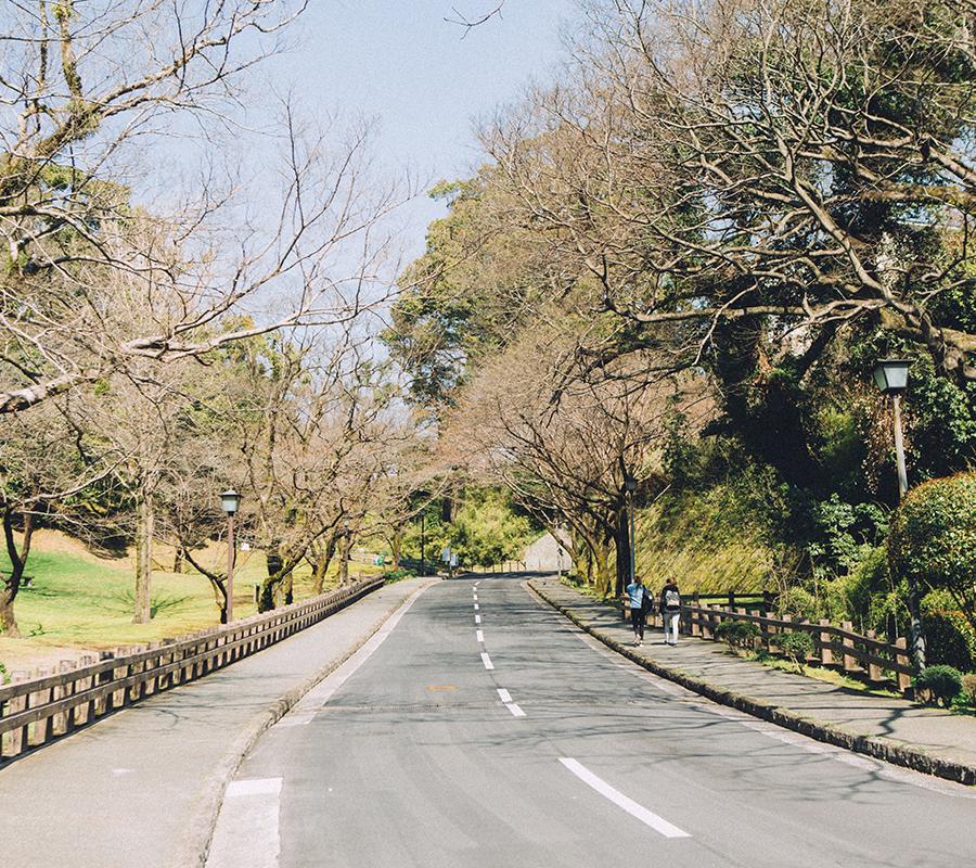 熊本城へ続く道